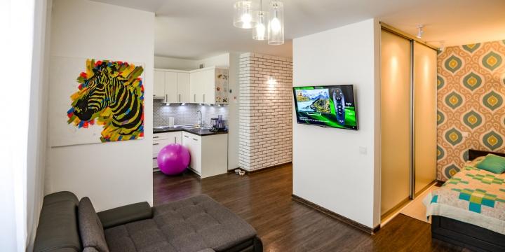 Оформление пространства однокомнатной квартиры