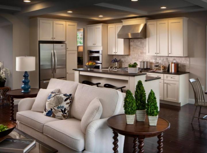 Кухня-гостиная с зелеными элементами