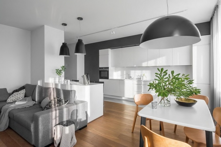 Монохромная кухня-гостиная